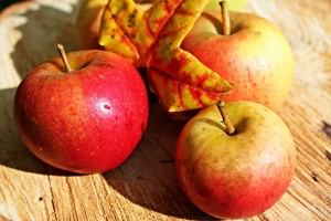 apple-496977_640