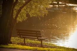 bench-801727_640
