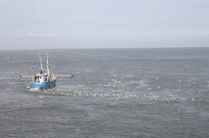 fishing-776993_640