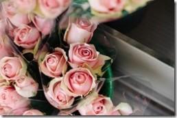 pink-925562_640.jpg