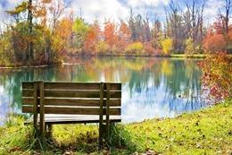 wood-bench-986347_640