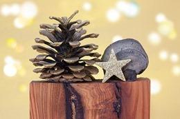 christmas-1069971_640