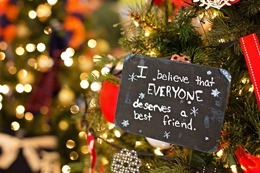 christmas-ornament-1042543_640