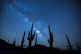 milky-way-923738_640