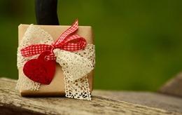 gift-1196292_640