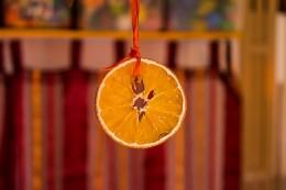 orange-648218_640